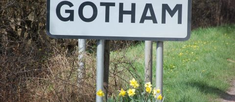 Gotham Library Volunteers Wanted